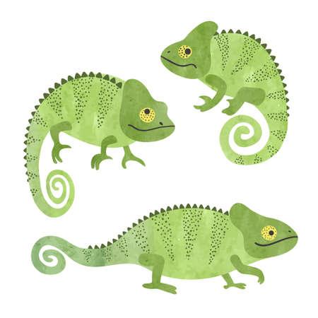 Set of funny watercolor chameleons. Vector lizards. Standard-Bild - 124884649