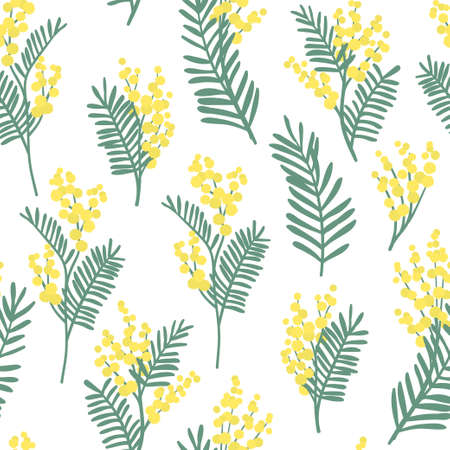 Seamless pattern with mimosa flowers and leaves. Vector botanical floral background. Illustration