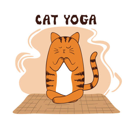 Cartoon funny yoga cat vector illustration. Yoga for kids.