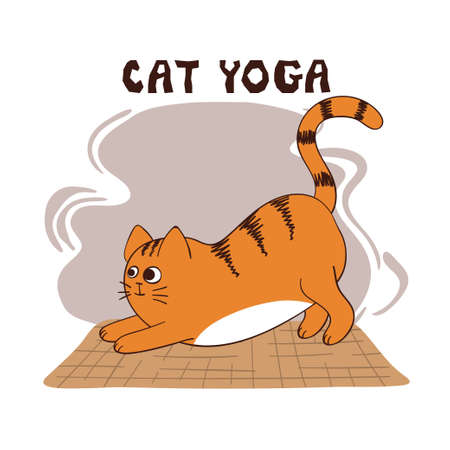 Funny yoga cat vector illustration. Cartoon yoga for kids. Vektorové ilustrace