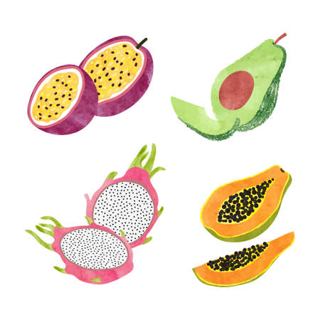 Watercolor fruit set. Tropical vector illustration. 矢量图像