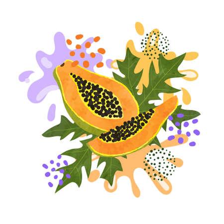 Papaya fruit vector illustration. Abstract watercolor juicy fruit splash 矢量图像