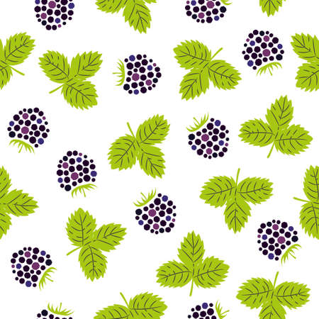 Seamless blackberry pattern. Vector illustration with berries and leaves. 矢量图像