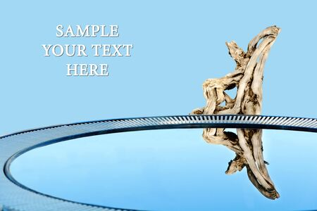 Concept composition with water, snag and reflection (with the place for your design and text)  Stock Photo