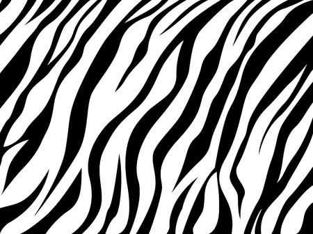 skin zebra Illusztráció