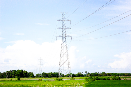 high voltage tower monopole transmission line on meadow rice farm and sky background Banque d'images