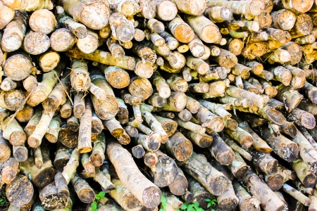 brick kiln: stacked for firewood wood pile for burn brick kiln Stock Photo