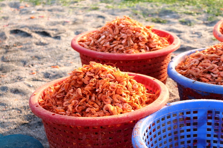 dried shrimp  photo