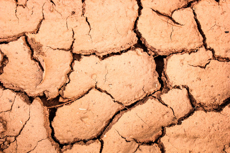 cracked soil during the dry season background photo