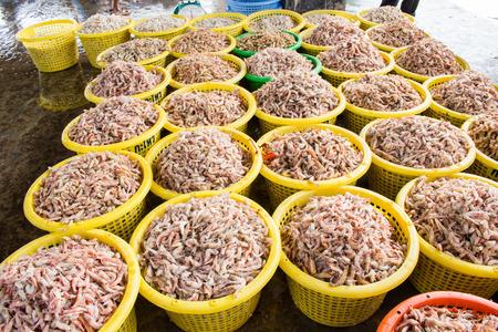 stack of fresh shrimp in basket sold in fish dock market photo
