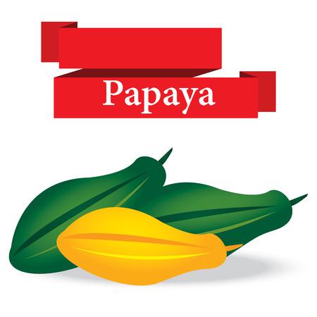 cranny: fresh papaya on white background vector Illustration