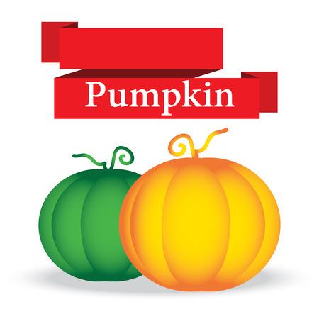 garden path: fresh pumpkin on white background vector