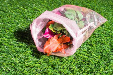 potpourri: potpourri on green grass texture background eco concept Stock Photo