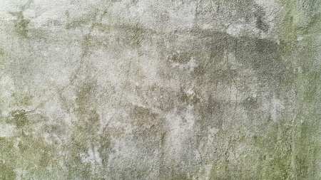 popular old cement wall with moss wallpaper background