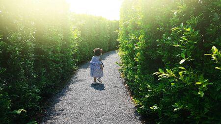 child escape maze green plant wall