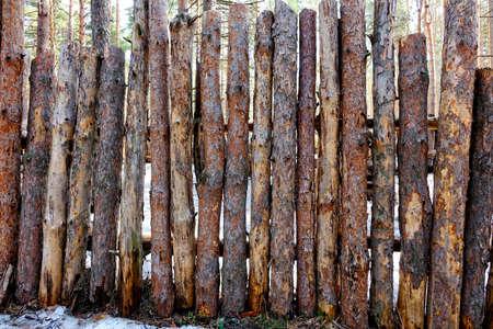 pino: Natural de fondo - una valla hecha de troncos de pino. Ásperos troncos de pino delgadas primas. Foto de archivo