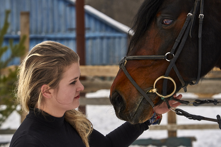 A girl with long blonde hair communicates with her favorite horse. The girl finished riding a horse. A cloudy winter day. Close-up.  Stock Photo