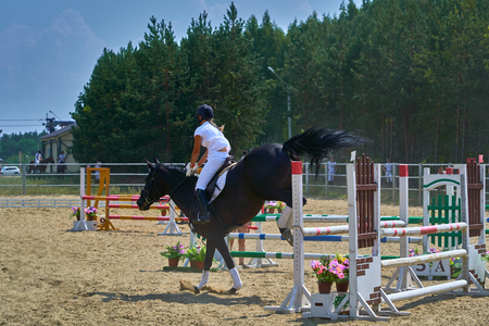A young woman jockey on a horse performs a jump across the barrier. Competitions in equestrian sport.