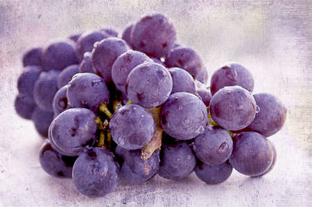concord grape: Fresh organic red grapes with a light texture  Stock Photo