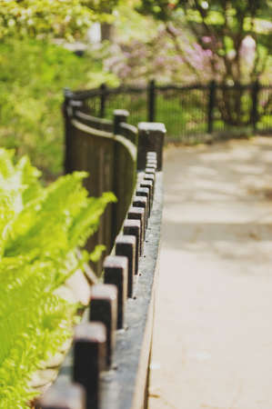 no boundaries: A wrought iron fence with very shallow depth of field