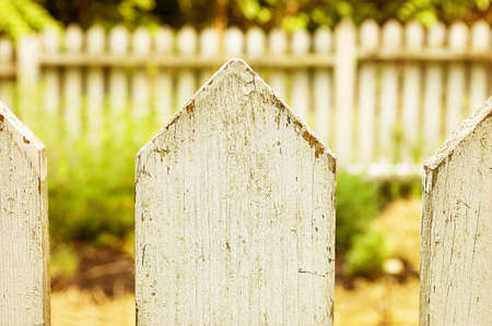 picket fence: View of a weathered white picket fence