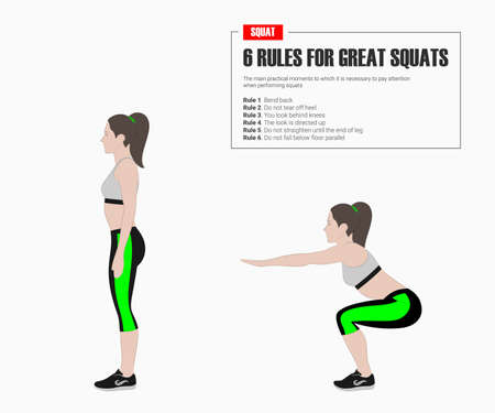 Squat. Sport exercises. Stage and reles of squar. Exercises with free weight. Illustration of an active lifestyle. Vector sketch.