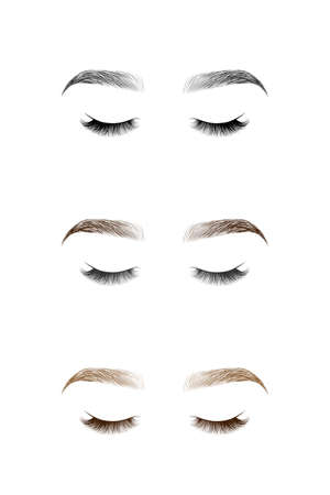 Set of closed eye with long eyelashes and eyebrows. Vector illustration.