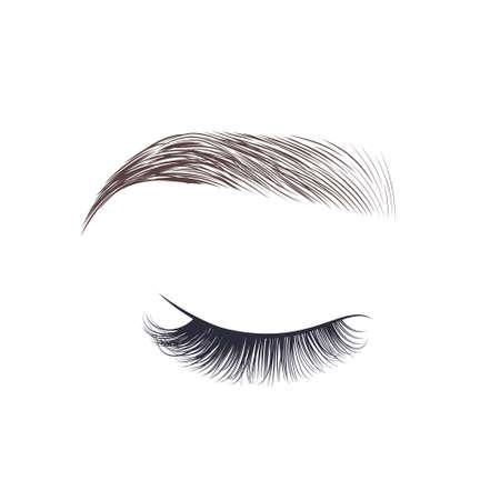 Makeup eyebrow. Closed eye with long eyelashes. Vector illustration
