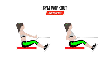 Seated cable row. Sport exercises. Exercises in a gym. Workout. Illustration of an active lifestyle. Vector Standard-Bild - 98292018