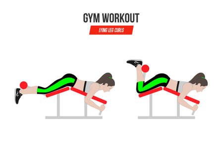 Lying leg curls. Sport exercises. Exercises in a gym. Illustration of an active lifestyle. Vector.