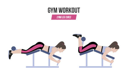 Lying leg curls. Sport exercises. Exercises in a gym. Illustration of an active lifestyle. Vector. Standard-Bild - 100416684