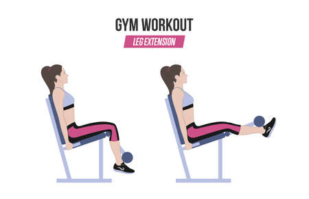 Leg extension. Leg extension in the simulator. Sport exercises. Exercises in a gym. Illustration of an active lifestyle. Vector.