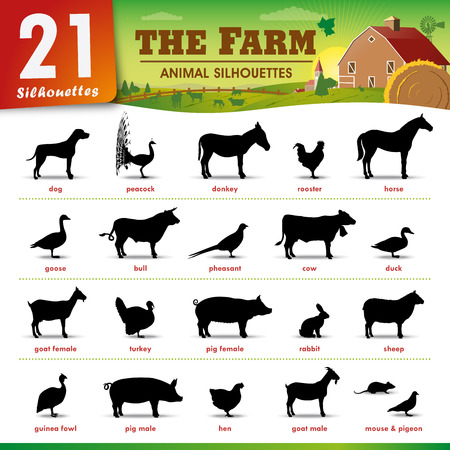 Set of 21 silhouettes Representing different farm animals Vector