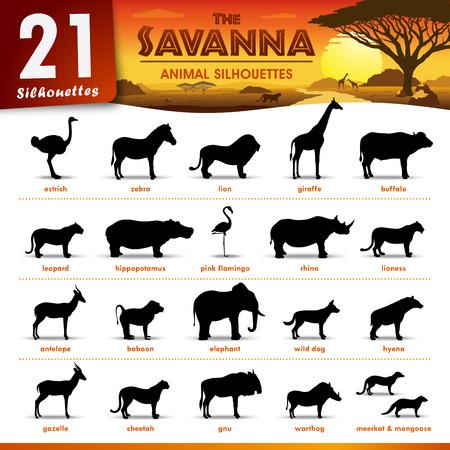 Vector - Conjunto de 21 siluetas que representan diferentes animales de la sabana