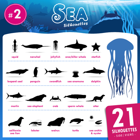 sperm whale: Set of 21 Silhouettes representing different Sea Animal part.2.