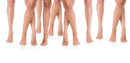 Seven  pairs female legs on a floor. photo