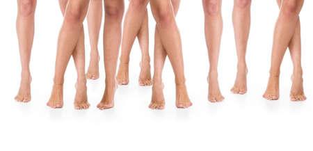 benen: Zeven paren vrouwelijke benen op een vloer.
