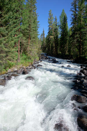 The mountain river in the Altai Mountains in Siberia Stock Photo - 11926454