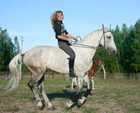 rein: Girl on a horse without a saddle makes an evening stroll Stock Photo