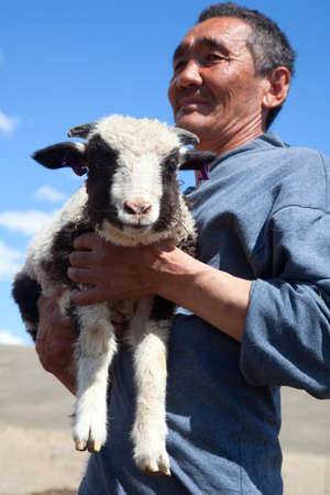 The adult man the shepherd carries on hands of a small lamb photo