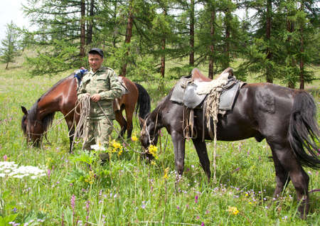 mongolia horse: The young groom with two horses on a leash Stock Photo
