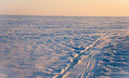cold winter in the polar tundra in Siberia photo