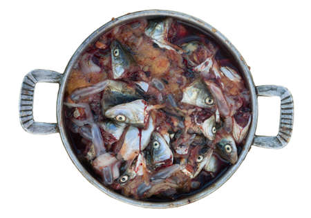 fish heads in close-up, the waste in the kitchen Stock Photo - 15853113