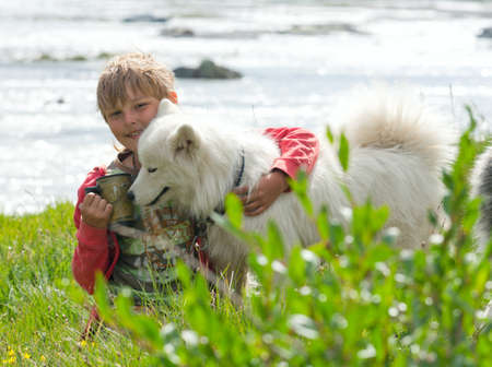 A boy plays with a dog breed husky Stock Photo