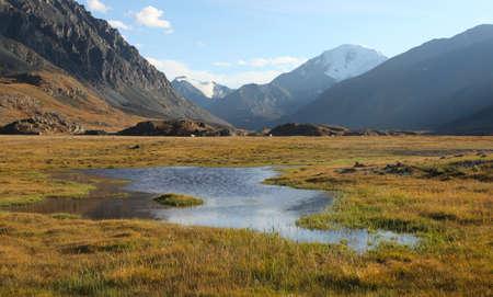 alpine tundra: Siberian Alpine Tundra, Altai Russia