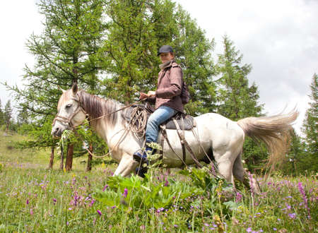 Woman on horse at a walk in the meadow photo