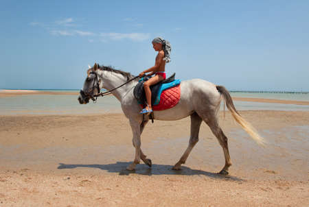 Un ni�o de paseos a caballo en la playa photo