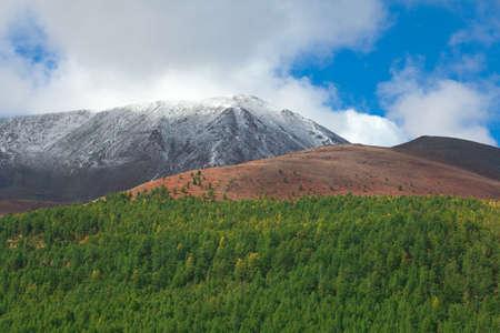 Mountain Siberian taiga in the far south Russia photo