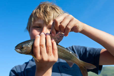 grayling: Boy caught grayling and shows all your catch