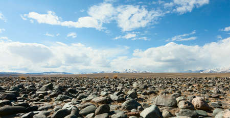 desert: Mountains, the steppe and the sky - this is the essence of Central Asia. Mongolia and Altai